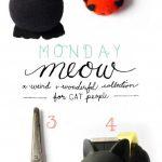 Monday Meow 07